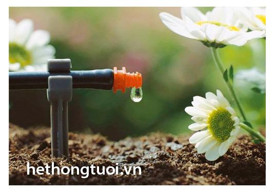 Sử dụng phương pháp tưới nhỏ giọt cho cây ăn quả khi mới gieo trồng