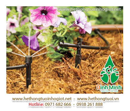 Bạn muốn mua hệ thống tưới nhỏ giọt quấn gốc cho cây ăn trái tại Bắc Giang?